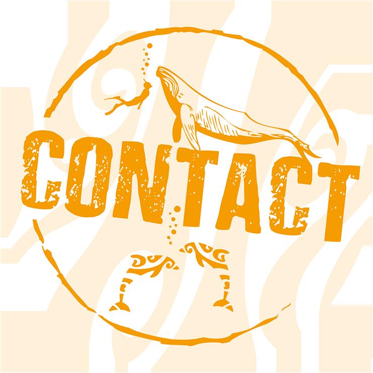 schwimmen-mit-walen-und-delfinen-oceano-whalewatching - das logo zeigt einen taucher, einen buckelwal und zwei delfine sowie das wort contact